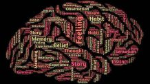 Neuromarketing Potencializa Vendas …