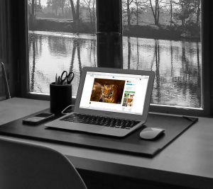 Read more about the article Marketing Versus Web Design SOS …