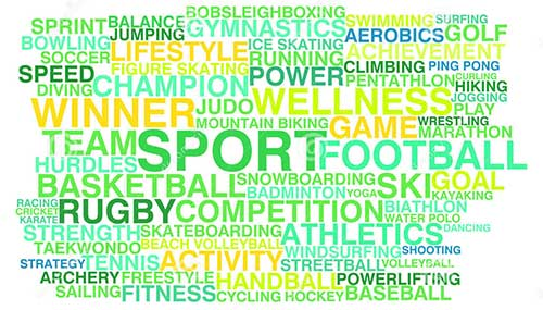 Marketing Esportivo Esmiuçando Paixões …